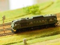 Dania, wypadek kolejowy, ranni, ofiary, pociąg