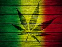 Jersey, marihuana, legalizacja, turystyka, Wielka Brytania