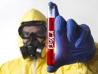 lotniska, kontrole, ebola, wirus