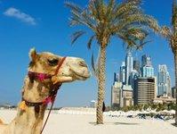 Dubaj, kampania, promocja, turyści, zmiany, poprawa, turystyka, rozwój