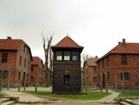 muzeum, obóz, Auschwitz, zwiedzający, organizacja, zmiana, indywidualnie , turyści