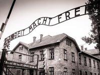 państwowe muzeum auschwitz birkenau, aplikacja, remember, obóz koncentracyjny, historia