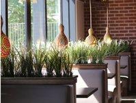 restauracje, sphinx, sopot, nowy lokal, lokalizacja, ilość miejsc, oferta,