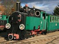 kolej wąskotorowa, wzrost, pasażer, pociąg, urząd transportu kolejowego,