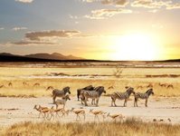 hilton, ekspansja, afryka, inwestycja