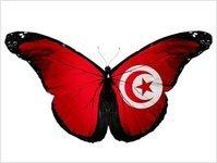 odkrycie, atrakcja, turystyka, tunezja, archeolog, nurkowanie