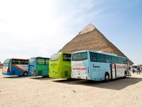 autobus, egipt, wypadek, autokar, transport, bani suwajf