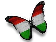 Polak, Węgier, Węgierska Turystyka S.A., Północna Nizina Węgierska, Budapeszt, Północne Węgry, jednodniowy odwiedzający, turysta