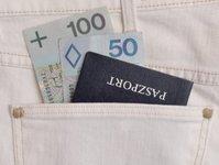 TAP Portugal, linie lotnicze, przewoźnik, brytyjsko-hiszpański International Airlines Group (IAG), niemiecka Lufthansa Group (LH), kolumbijsko-salwadorska Avianca-TACA Synergy Group, Portugalia, zadłużenie, Unia Europejska, UE, umowa, paszport, polski paszport, flagowy przewoźnik