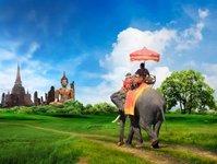 angkor wat, słoń, zakaz, tripadvisor, ekologia