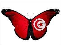 tunezja, lotnisko, turyści, port lotniczy, lotnictwo cywilne
