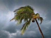 burza, MSZ, Pabuk, Tajlandia, Bangkok, ambasada