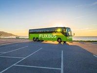 flix bus, przewoźnik autobusowy, autobus, brazylia, autokar