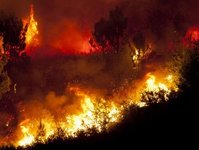 pożar, eubea, wyspa, grecja, ewakuacja, turyści, ogień