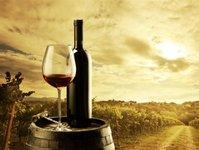 wino, polska, nagroda, uniwersytet przyrodniczy, wine expo poland