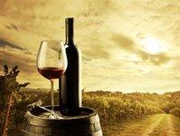 związek pracodawców polska rada winiarstwa, gastronomia, wino, ustawa winiarska, ministerstwo rolnictwa