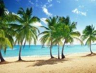 wakacje, wyjazd, turystyka, traveldata, ceny, analiza