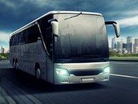 wypadek, autobus, ciężarówka, dk74, opatów, kierowca, zderzenie