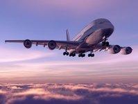 iata, międzynarodowe zrzeszenie przewoźników powietrznych, ożywienie, pomoc