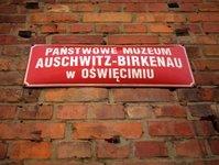 muzeum auschwitz, wyniki, odwiedzający
