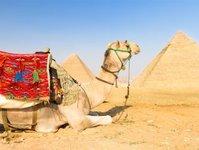 egipt, turystyka, wielka brytania, urząd statystyczny, przyjazdy turystyczne