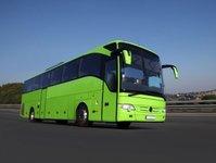 Przewoźnik, autobus, Sindbad, połączenia, międzynarodowy